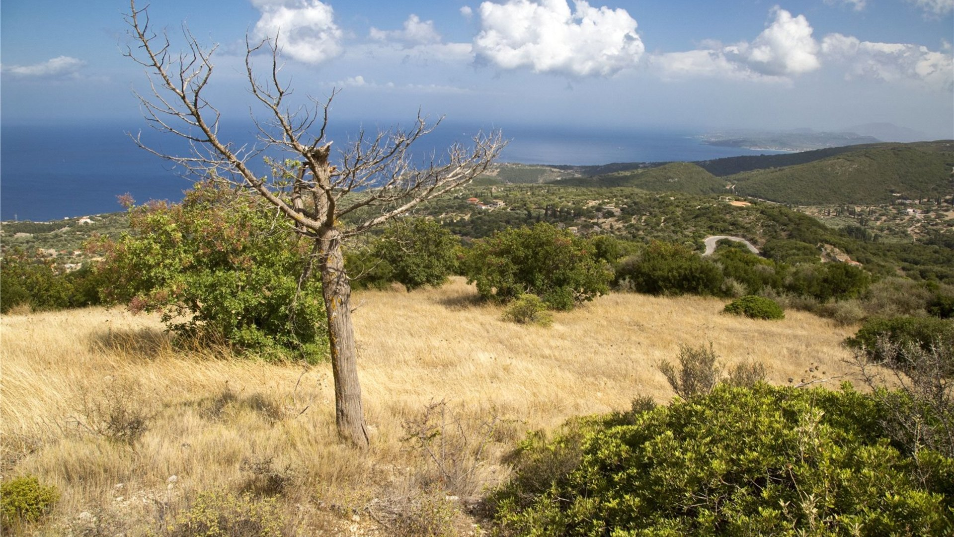 Upper Megaloni Plot, Zakynthos, Greece