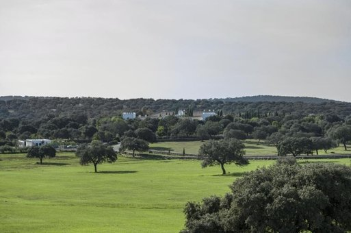 Blanco Estate, Near Seville, Spain
